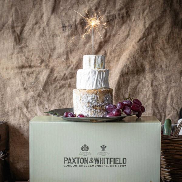Mini Celebration Cheese Cake