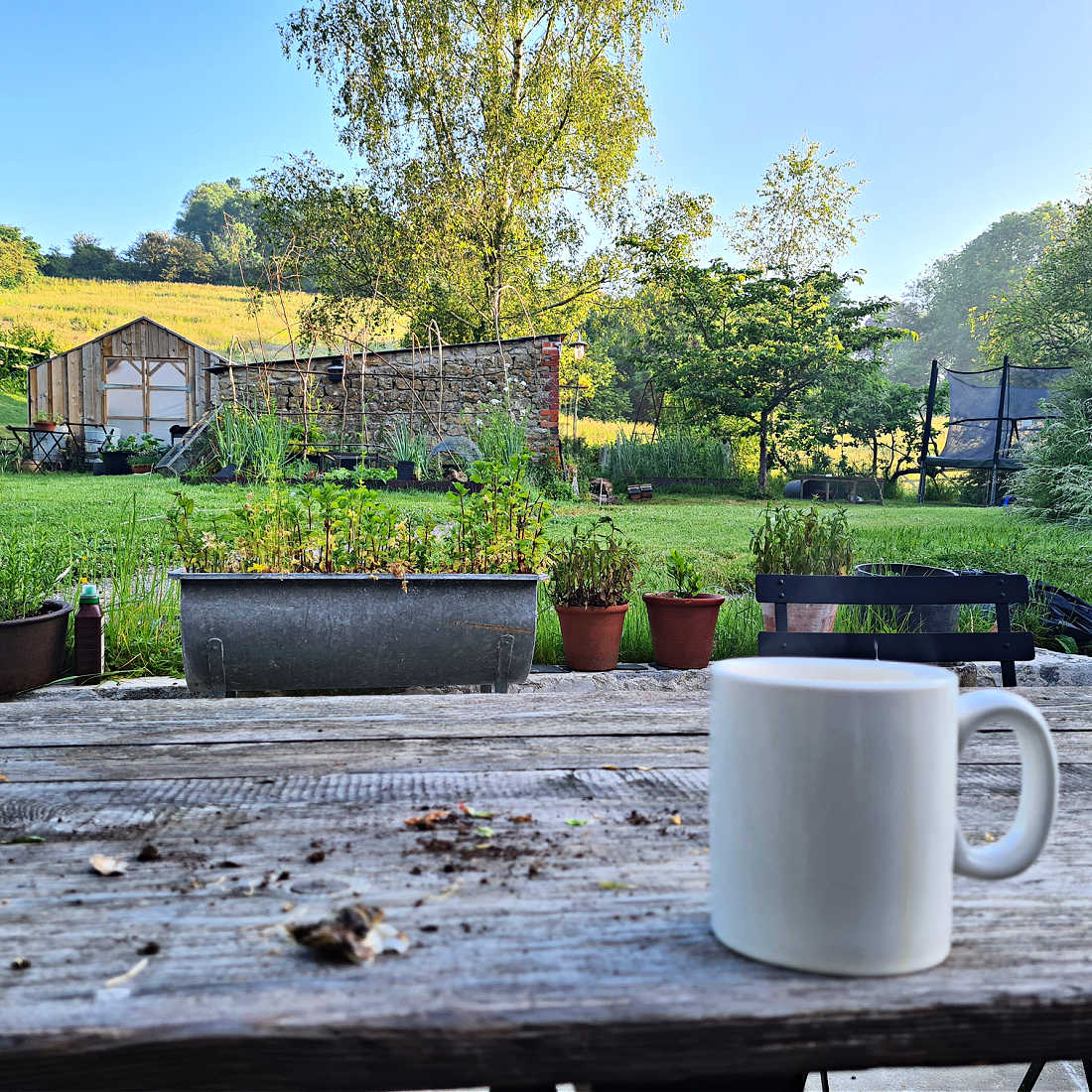 Duckett-s-Caerphilly-garden-low-res